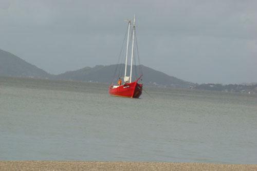 Barco de Floripa